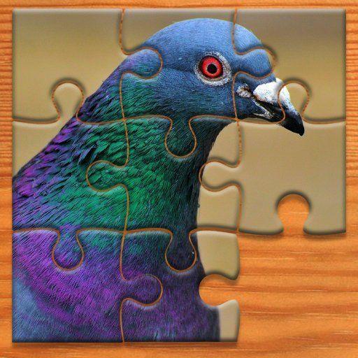 Pigeon Jigsaw Puzzle